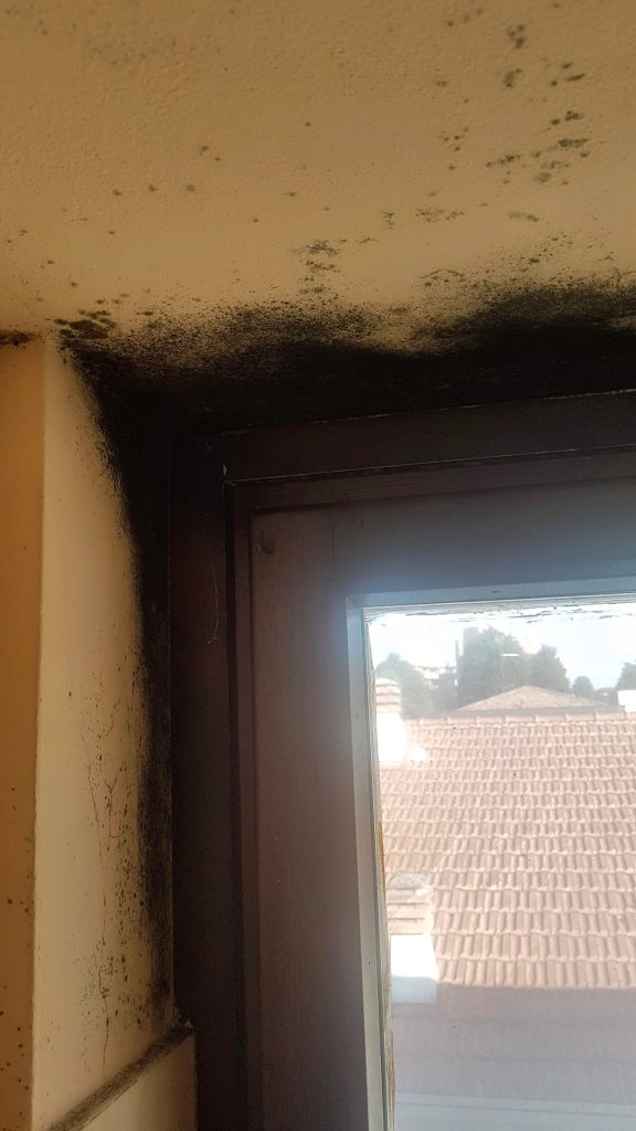 misure finestre standard